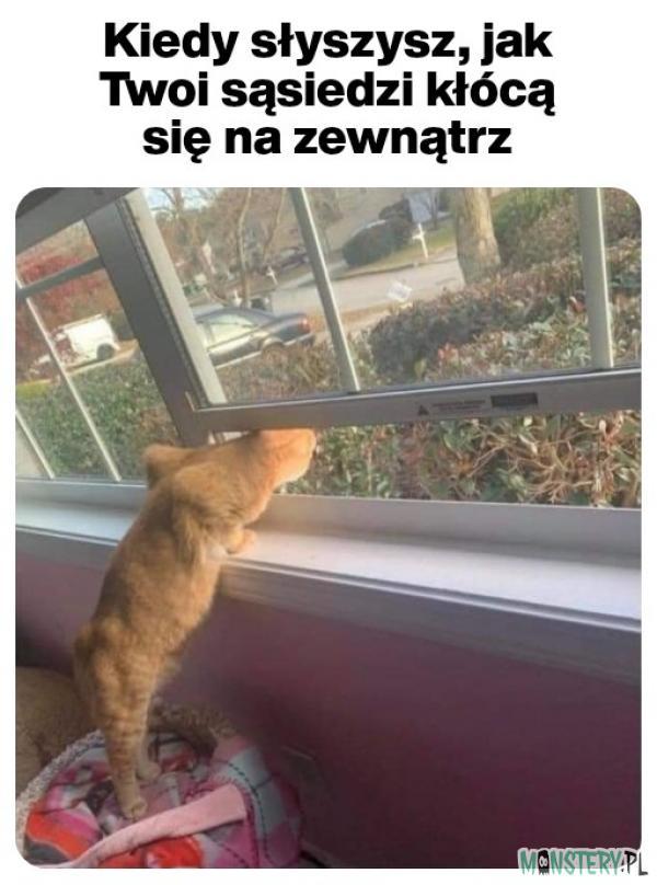 Co tam u sąsiada słychać