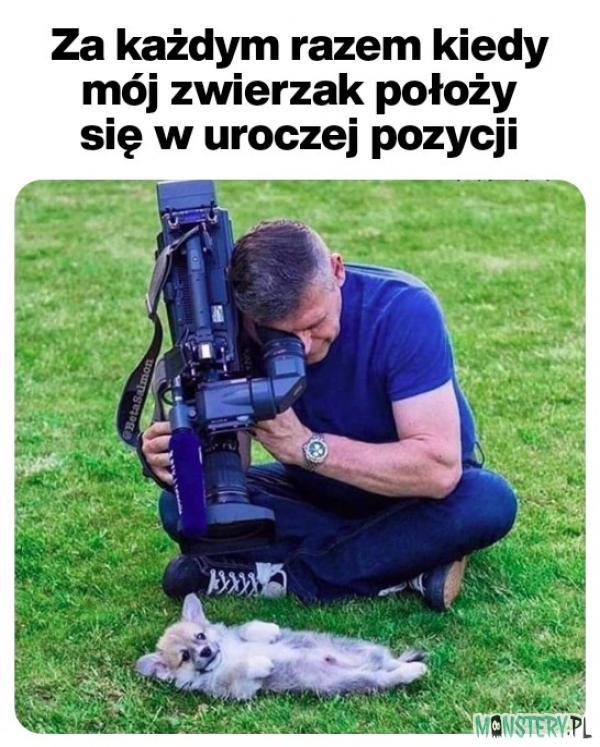 Kto nie ma psa ten nie zrozumie