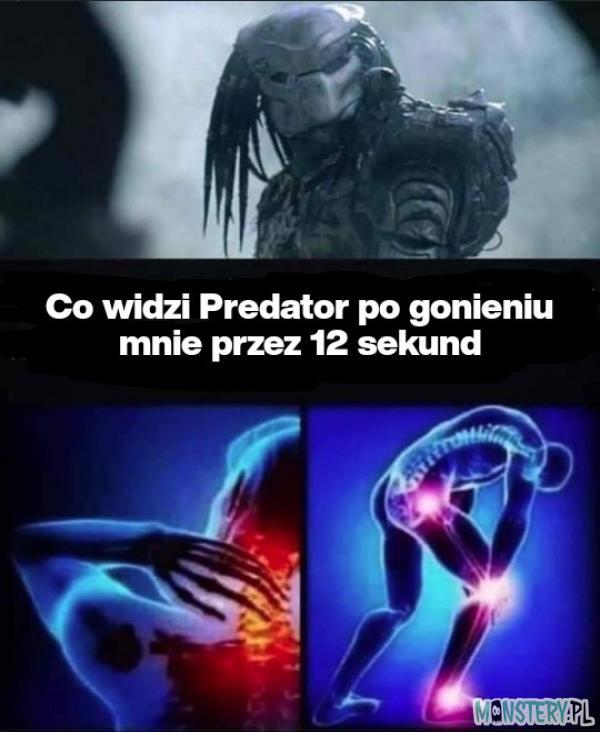 Predator mnie goni