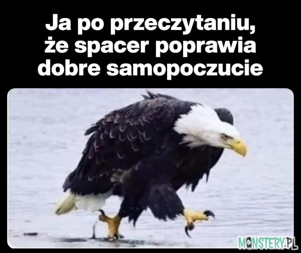 Spacer to zdrowie
